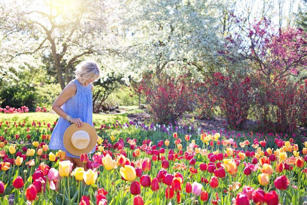 spring-2298280_1280-min